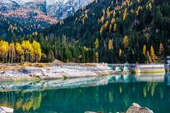 La diga di Sufnersee (mariateresa toledo) Tags: diga dam sufnersee autunno autumn riflessi reflection alberi trees sufers reno grigioni svizzera switzerland mariateresatoledo dsc07666modifica2