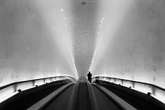 (timmytimtim75) Tags: hamburg elbphilharmonie tunnel escalator monochrome light silverefex