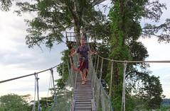 Kładki bambusowe na tarasy widokowe | Canopy walkway