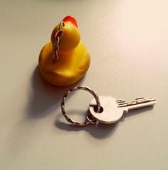 Broken (anne.stergatos) Tags: ente schlssel schlsselanhnger duck broken kaputt defekt gebrochen gummiente schatten shadow kette minimalismus