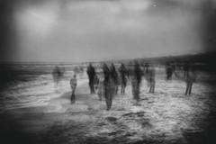 beachwalk (hansekiki ) Tags: dars prerow ostsee strand beach multipleexposure mehrfachbelichtung icm intentionalcameramovement canon 5dmarkiii