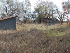 130. A long-vacant farmstead on the east end of town. The farmhouse is long-gone, Brantford, 11-5-16 (leverich1991) Tags: exploring kansas 2016 brantford ghost town washington store