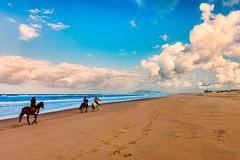 A caballo (Enrique Mesa) Tags: caballos horses paisaje landscape playa beach sudfrica southafricacolorcolorfulsantaluca