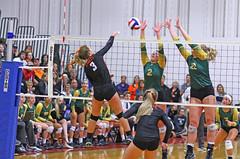 IMG_6877 (SJH Foto) Tags: girls volleyball high school allentown central catholic somerset team teen teenager net battle spike block action shot jump midair