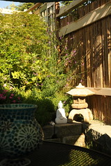 Private and relaxing view, white Buddha statue, Japanese lantern, against a bamboo fence, glass lamp, mesh patio table, umbrella shadow, sunlight, block walls, A Garden for the Buddha, Seattle, Washington, USA (Wonderlane) Tags: seattle usa sunlight design washington ui japanesemaple ux sunlightandshadow japaneselantern glasslamp 1189 umbrellashadow blockwalls agardenforthebuddha privateandrelaxingview whitebuddhastatue againstabamboofence meshpatiotable