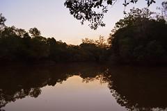 Bungawalbin Creek (dustaway) Tags: water reflections countryside australia nsw northernrivers richmondvalley bungawalbincreek bungawalbincatchment