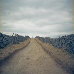 Walk Alone (MMortAH) Tags: 120 film mediumformat spring lomo lomography kodak yorkshire lubitel2 lubitel 100 analogue clapham dales settle ektar