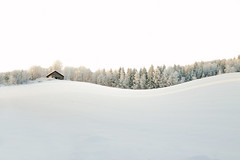 White Wave (MilaMai) Tags: winter white house snow forest suomi finland landscape countryside europe artistic minimalism milamai