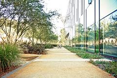 Floating World (ken mccown) Tags: architecture pasadena greenbuilding californiainstituteoftechnology frederickfisherandpartners walterandleonoreannenbergcenterforinformationscienceandtechnology