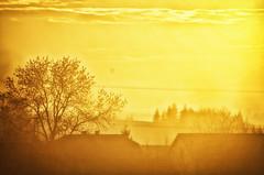 "Poland Sunset (Smo_Q) Tags: trip sunset sun yellow balloon poland polska polen polonia balon landascape польша żółty krajobraz 波兰 ポーランド 폴란드 ""pentax k5"""