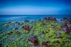 PLAYA DE MONSUL 05 (www.ignaciolinares.com) Tags: blue beach azul mar spain cabo rocks playa andalucia cielo desierto almeria cabodegata rocas monsul playademonsul playasdealmeria desiertocabodegata playasdelcabodegata