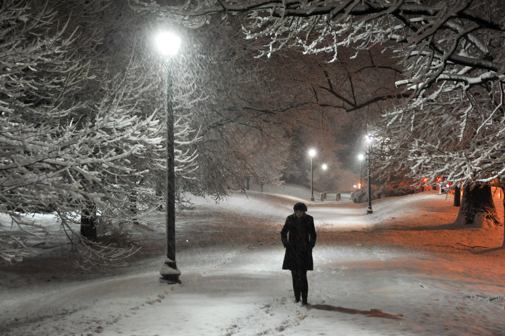 Image result for lonely in winter