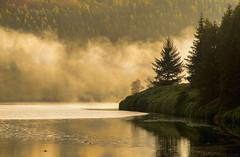 Mist over Ladybower (CLIFFWALKER) Tags: mist lake fog day walk dam derbyshire ducks ladybower vision:mountain=066 vision:sunset=0547 vision:clouds=0501 vision:sky=0861 vision:outdoor=0766