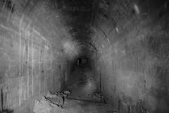 Polish defensive fortifications in Vilnius, Lithuania (krbak) Tags: urban abandoned underground war exploring polish tunnel bunker ww2 fortifications defensive lithuania vilnius digger urbex lietuva bunkeriai