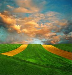 Effortless life (Katarina 2353) Tags: green nature field landscape serbiainspired