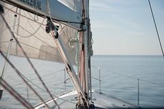 Sailing (Ben Fredericson (xjrlokix)) Tags: ocean wallpaper water netherlands dutch boat blog nikon sailing stock creative large skipper free commons full cc sail d3 ijsselmeer 2470mm
