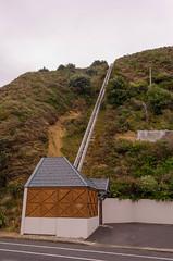 NZ12-09501 (BartdeG) Tags: vakantie blog northisland noordereiland ozkiwi ozkiwi111
