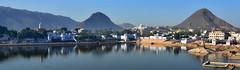 India - Rajasthan - Pushkar - 6d (asienman) Tags: india rajasthan pushkar asienmanphotography