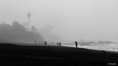 Lost (.KiLTRo.) Tags: cayucos california unitedstates kiltro beach sea pebble fog mist ocean