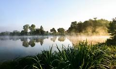 morning fog (Beginner1970) Tags: nikon nebel fog mist see thueringen natur germany