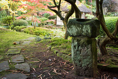 Tatton Japanese garden 15 oct 16 (Shaun the grime lover) Tags: knutsford cheshire park japanese stone basin tatton autumn carving garden leaves path tree nationaltrust