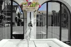 REFLETS (Elyane11) Tags: bassin eau vitres fleurs reflets suisse nyon fontaine