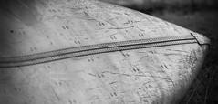Canoe (David Cantatore) Tags: ontario texture canoe metal aluminium aluminum canada