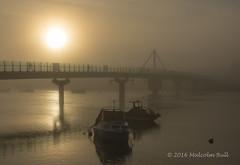 Fog on the Adur (Malcolm Bull) Tags: include shoreham fog river adur 20161027fog0028edited1web ferry bridge