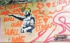 donald trump stencil (ElRa 01) Tags: streetart streetartméxico streetartlatinoamérica estencil graffiti grafitticity donaldtrumpenméxico crítica critiquesociale drawing dibujo ilustración cdmx stickerscdmx fotografía forest