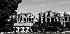 Another view of the Roman Coliseum! (sa Quiimera) Tags: architecture photooftheday phototherapy blackandwhitephotohraphy photography coliseo coliseum italia roma street photo withe black
