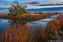 Morning at Market Lake (James Neeley) Tags: idaho marketlake sunrise landscape jamesneeley