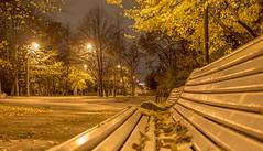 Golden autumn (pilot3ddd) Tags: stpetersburg moskovskyvictorypark goldenautumn leaves bench citylights olympuspenepl7 panasoniclumixg20mmf17 diamondclassphotographer