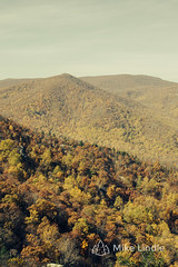 2016-Nov-06-Old_Rag-17.jpg (mikelindle) Tags: dchikes dchiking dctrails dc2016 dmv fall hike landscape oldrag shenandoah shenandoahnationalpark va autumn backpacking fallfoliage foliage hiking path rollinghills trails virginia