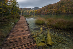 (Kujo1087) Tags: landscapes photography plitvice lake croazia composition journey nikon nikonclub nikonitalia iamnikon nationalgeographic wide foliage pointofview d810 nature outdoor