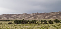 Across the Valley, Behind the Trees (brucetopher) Tags: dune sand dunes sanddunes valley desert rain cloud cloudy storm wonder tree trees sagebrush sage mountains