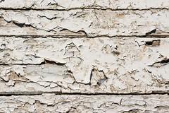 011_Flickr Nah Dran.jpg (stefan.mohme) Tags: alt marode abgeplatzt rissig kroatien grundfarben nahaufnahme kamera baumaterial oberflaechen macro jahreszeiten kroatien2013 cres patina weiss textur oberflaeche lack sommer struktur color old structure white