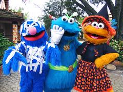 Grover, Cookie Monster and Zoe (meeko_) Tags: grover cookie monster cookiemonster zoe muppet sesamestreet halloween characters buschgardenscharacters muppetcharacters sesamestreetsafarioffun busch gardens tampa africa buschgardens buschgardenstampa buschgardenstampabay buschgardensafrica themepark florida