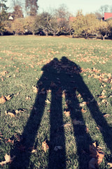 how we became so tall (HeyFromTheMoon) Tags: love shadow sunandshadow sun fall autumn two autumncolors couple inlove sunnyday lovelyday people