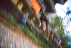 _3 (Taiwan's Riccardo) Tags: 2016 taiwan color 135film fujifilmrdpiii transparency plustek8200i rangefinder leicam5 leicalens fixed summaronm 3535