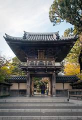 Japanese Tea Garden (Chen Yiming) Tags: japanese japan tea garden teagarden japaneseteagarden goldengate park sanfrancisco sanfranciscobay california