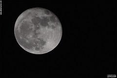 Moon in the dark (  ) Tags: iraq kurdistan erbil hawler ahmed press photography photographer moon sky dark
