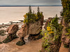 Hopewell Rocks Cliff View (opster673) Tags: hopewell rocks new brunswick tital bore water bay fundy trees beach rain clouds
