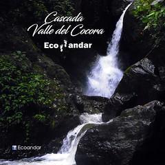 Cascada Valle del Cocora (ecoandarpereira) Tags: cascada valle del cocora quindio colombia caminar caminata naturaleza fotografía agua water waterfall colombian