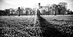 American memorial (Simply Simon) Tags: american memorial war calm frosty morning