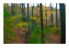 colours1 (catt1871) Tags: lakedistrict lakes landscape autumn derwent brandelhow photomerge