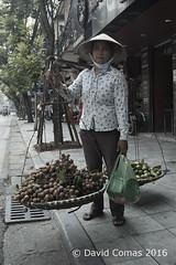 Hanoi - Old Quarter (CATDvd) Tags: august2016 catdvd cnghaxhichnghavitnam davidcomas hanoi httpwwwdavidcomasnet httpwwwflickrcomphotoscatdvd hni nikond70s oldquarter portrait repblicasocialistadevietnam repblicasocialistadelvietnam retrat retrato socialistrepublicofvietnam vietnam vitnam