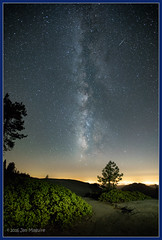 Manzanita and Stars 0451 (maguire33@verizon.net) Tags: california milkyway sanjoaquinvalley sequoia sequoianationalpark airpollution galaxy meteor pollution stars threerivers unitedstates us