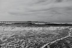 Ocean Beach (ElanusCaeruleus) Tags: sea grey bridge oceanbeach california