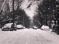 IMG_6446(1) (verruckteinzelganger) Tags: kharkiv kharkov ukraine winter street харьков украина улица снег зима город city