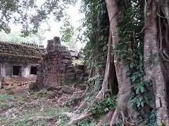 jungle sounds (mistdog) Tags: temple cambodia jungle angkor preahkhan